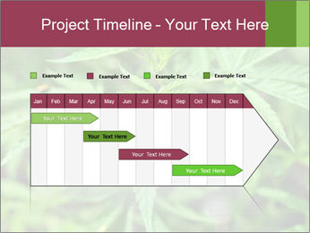 0000072612 PowerPoint Template - Slide 25