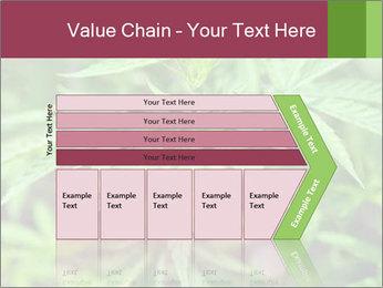 0000072612 PowerPoint Template - Slide 27