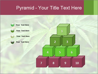 0000072612 PowerPoint Template - Slide 31