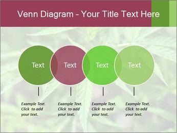 0000072612 PowerPoint Template - Slide 32