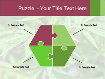 0000072612 PowerPoint Template - Slide 40