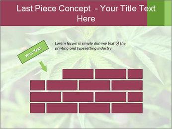0000072612 PowerPoint Template - Slide 46