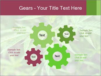 0000072612 PowerPoint Template - Slide 47