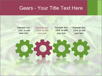0000072612 PowerPoint Template - Slide 48