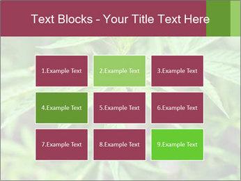 0000072612 PowerPoint Template - Slide 68