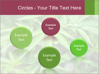 0000072612 PowerPoint Template - Slide 77
