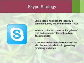 0000072612 PowerPoint Template - Slide 8