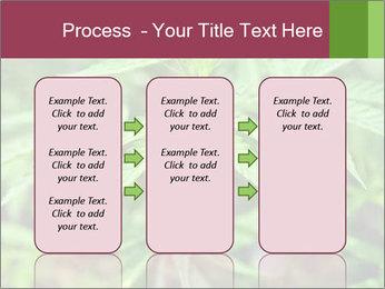 0000072612 PowerPoint Template - Slide 86