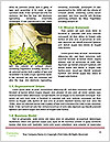 0000072612 Word Template - Page 4