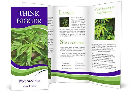 0000072613 Brochure Template