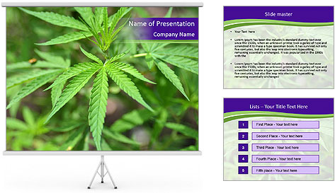 0000072613 PowerPoint Template