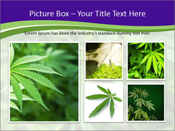 0000072613 PowerPoint Template - Slide 19