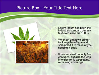 0000072613 PowerPoint Template - Slide 20