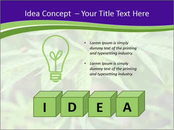 0000072613 PowerPoint Template - Slide 80