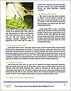 0000072613 Word Template - Page 4