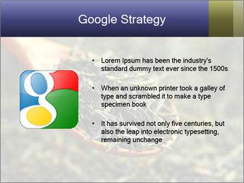 0000072617 PowerPoint Template - Slide 10