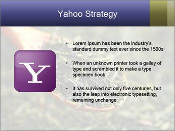 0000072617 PowerPoint Template - Slide 11