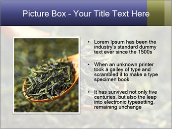 0000072617 PowerPoint Template - Slide 13