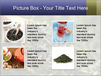 0000072617 PowerPoint Template - Slide 14