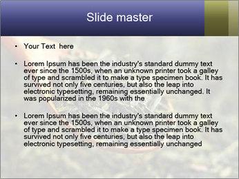 0000072617 PowerPoint Template - Slide 2