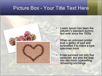 0000072617 PowerPoint Template - Slide 20