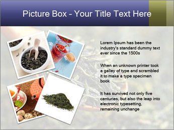 0000072617 PowerPoint Template - Slide 23