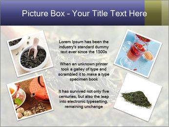 0000072617 PowerPoint Template - Slide 24