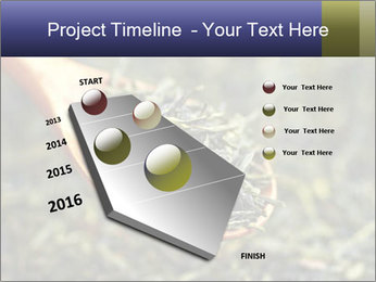 0000072617 PowerPoint Template - Slide 26