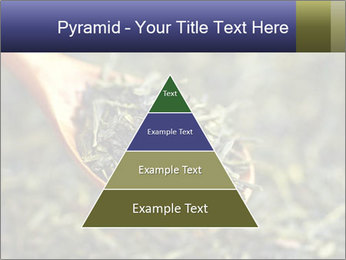 0000072617 PowerPoint Template - Slide 30