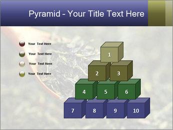 0000072617 PowerPoint Template - Slide 31