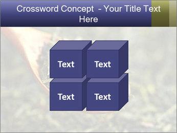 0000072617 PowerPoint Template - Slide 39