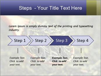 0000072617 PowerPoint Template - Slide 4