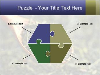 0000072617 PowerPoint Template - Slide 40