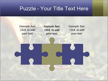 0000072617 PowerPoint Template - Slide 42
