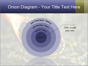 0000072617 PowerPoint Template - Slide 61