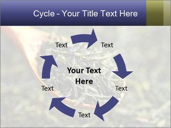 0000072617 PowerPoint Template - Slide 62