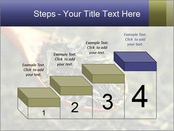 0000072617 PowerPoint Template - Slide 64