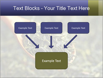 0000072617 PowerPoint Template - Slide 70