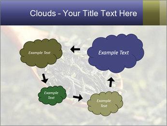 0000072617 PowerPoint Template - Slide 72