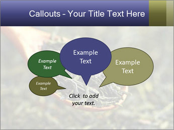 0000072617 PowerPoint Template - Slide 73