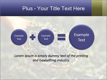 0000072617 PowerPoint Template - Slide 75