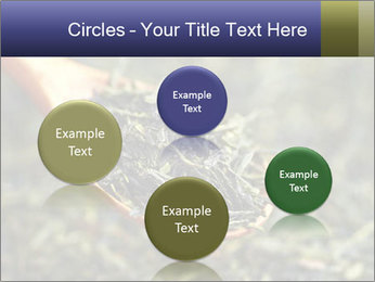 0000072617 PowerPoint Template - Slide 77