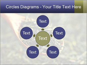 0000072617 PowerPoint Template - Slide 78