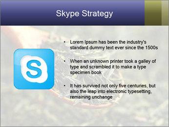 0000072617 PowerPoint Template - Slide 8