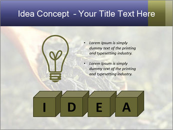 0000072617 PowerPoint Template - Slide 80