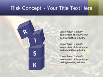 0000072617 PowerPoint Template - Slide 81
