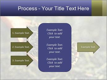 0000072617 PowerPoint Template - Slide 85