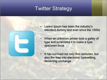 0000072617 PowerPoint Template - Slide 9