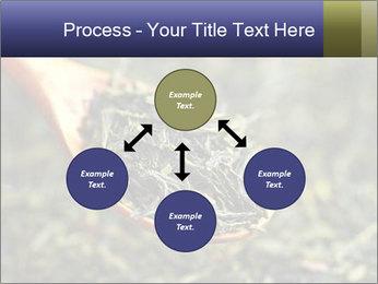 0000072617 PowerPoint Template - Slide 91