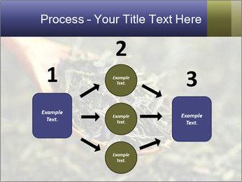 0000072617 PowerPoint Template - Slide 92
